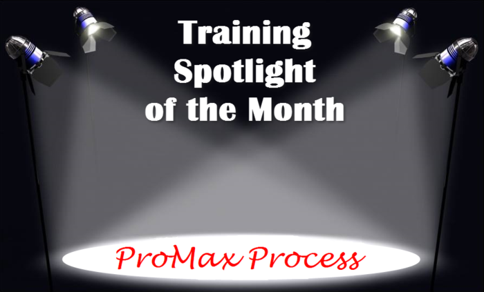 Training Spotlight ProMax Process